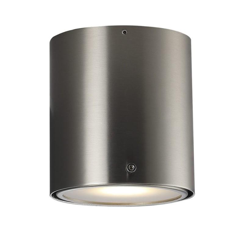 Brushed Steel Ceiling Bathroom Lamp