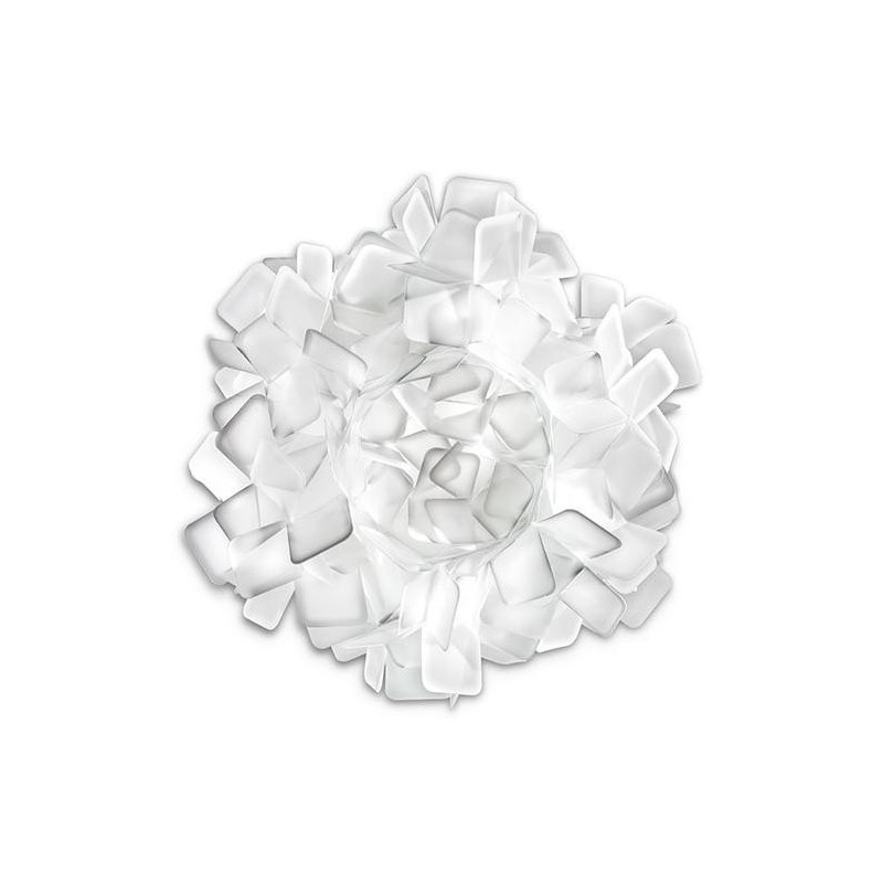 Adriano Rachele Clizia Ceiling Wall Lamp