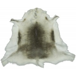 White Reindeer Skin | Medium | Large