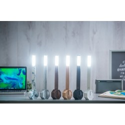 Gingko Octagon One Desk Lamp - Black