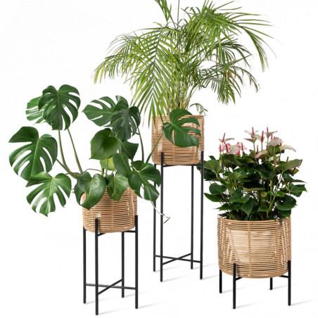 Vincent Sheppard Vivi Indoors Plant Stand