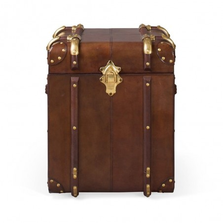 Large Havana Leather Travelling Trunk