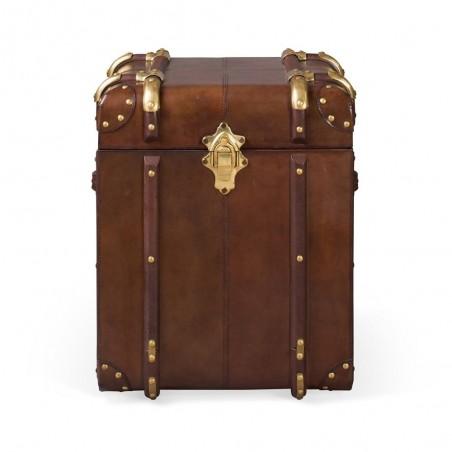 Large Havana Leather Travelling Trunk