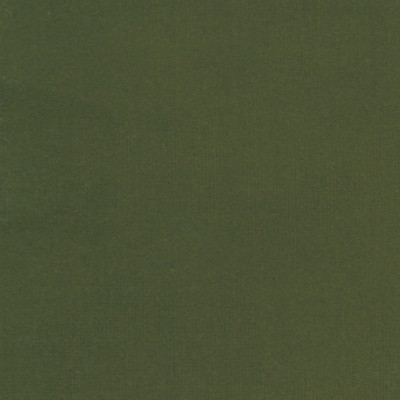 Olive - 75